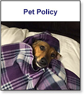 Commerce Department Pet Policy